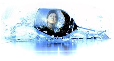 Bashung sous verre..jpg